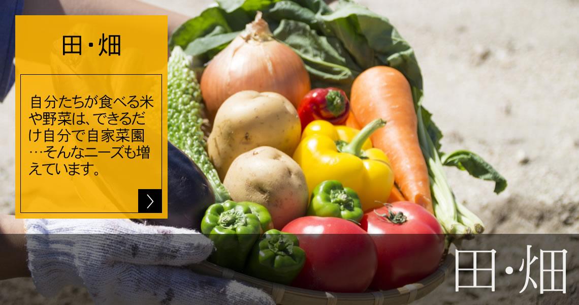 農地(田畑) 自分たちが食べる米や野菜は、できるだけ自分で自家菜園…そんなニーズも増えています。